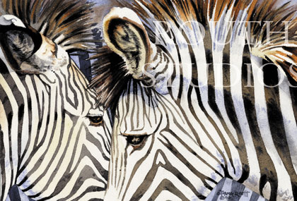 "Craig Routh, Artist & Illustrator - ""Zebras, What are you in for?"""